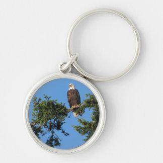 Eagle In Tree Keychain