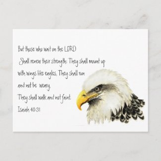 Eagle - Inspirational - Scripture - They that wait postcard