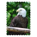 Eagle Invitation