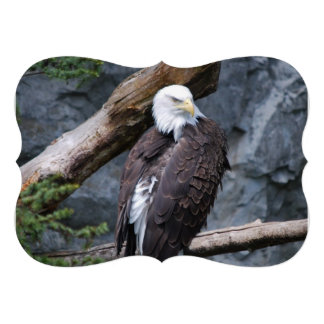 Eagle Invites