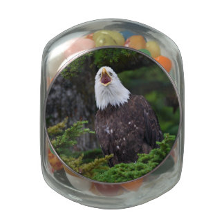 eagle jelly belly candy jar