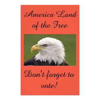 Eagle land of the free poster flyer