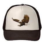 Eagle Landing Hat