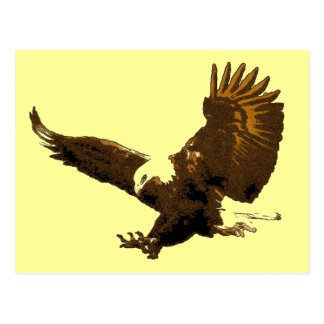 Eagle Landing Post Cards