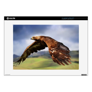 Eagle Laptop Decal