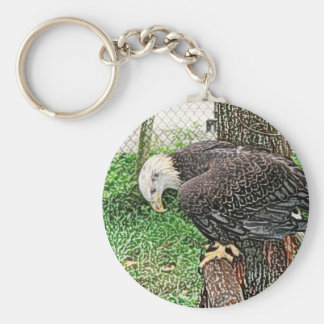 eagle looking down off perch sketch keychain