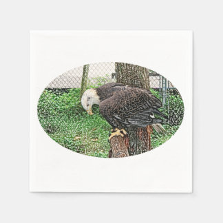 eagle looking down off perch sketch paper napkins