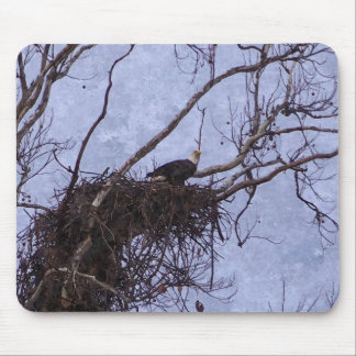 Eagle Lookout Painting Mouse Pad