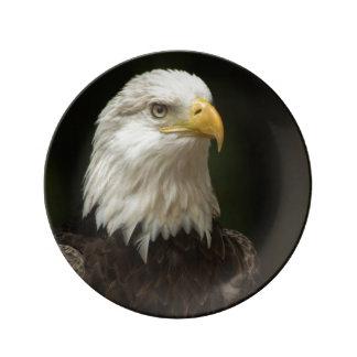 Eagle Porcelain Plates