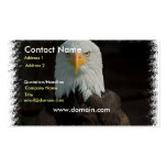 Eagle on a Business Card