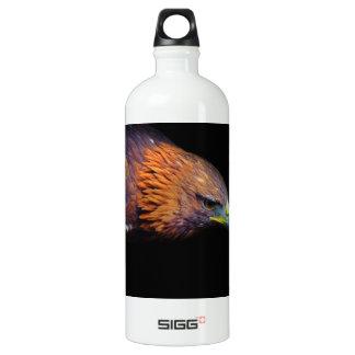 Eagle on Black Background Water Bottle