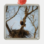 Eagle on Branch Christmas Ornaments