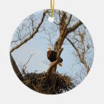 Eagle on Branch Ornament