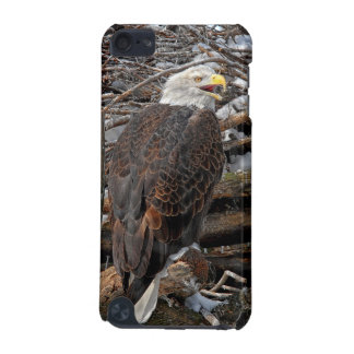 Eagle on Snowy Nest iPod Touch 5G Cases
