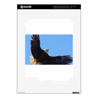 Eagle Open Wings iPad 3 Decal