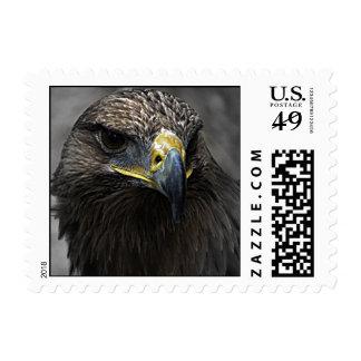 Eagle oscuro sellos