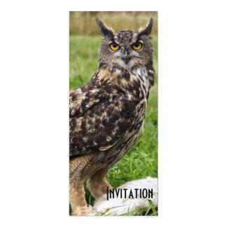 Eagle Owl 4x9.25 Paper Invitation Card