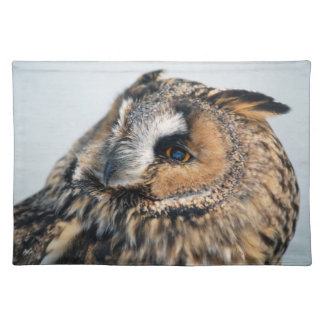 Eagle Owl American MoJo Placemats
