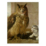 Eagle Owl and Cat with Dead Rats Post Cards
