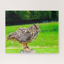 Eagle Owl-Bird of Prey. Jigsaw Puzzle