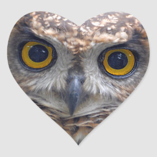 EAGLE OWL (Bubo Bubo) Heart Sticker