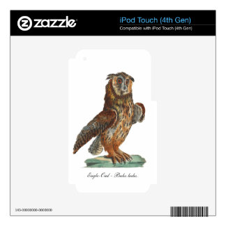 Eagle-Owl - Bubo bubo iPod Touch 4G Decals