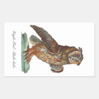 Eagle-Owl - Bubo bubo Rectangular Sticker