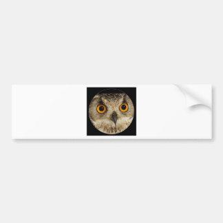 """Eagle Owl"" Car Bumper Sticker"