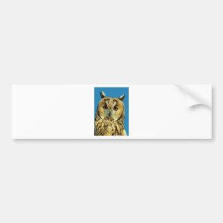 Eagle Owl Face Bumper Sticker