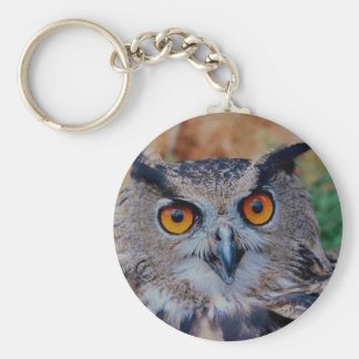 Eagle Owl Face Looking Right at You! Keychain