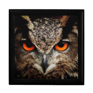 Eagle-Owl Jewelry Boxes