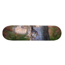 Eagle Owl Hunting Skateboard Deck