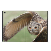 Eagle Owl In Flight Case For iPad Air