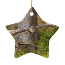 Eagle Owl in Flight Ceramic Ornament
