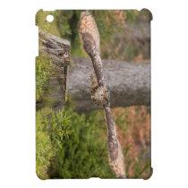 Eagle Owl in Flight Cover For The iPad Mini