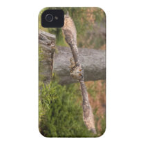 Eagle Owl in Flight iPhone 4 Cover