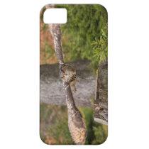 Eagle Owl in Flight iPhone SE/5/5s Case