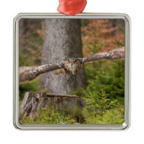 Eagle Owl in Flight Metal Ornament