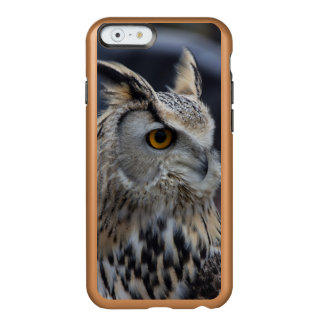 Eagle Owl Insipio Feather Shine iPhone Case