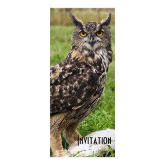 Eagle Owl Personalized Invitations