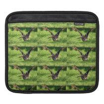 Eagle Owl iPad Horizontal Cover