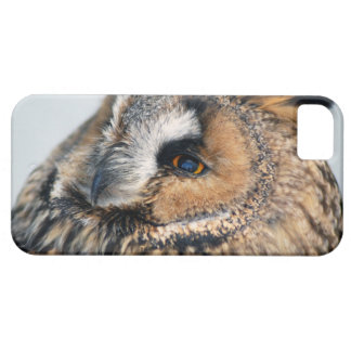 Eagle Owl iPhone 5 Case