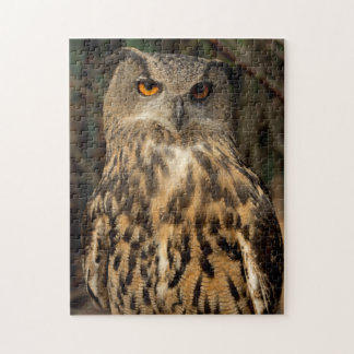 Eagle Owl Jigsaw Puzzle