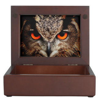 Eagle Owl Memory Box