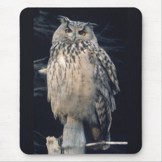 Eagle owl mouse pad