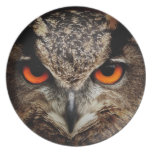 Eagle-Owl Party Plate