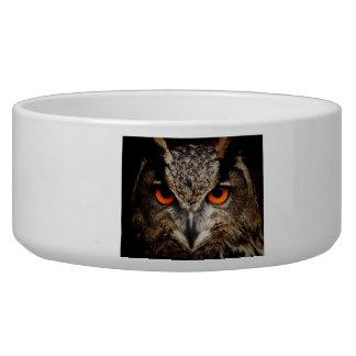 Eagle-Owl Pet Water Bowl