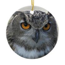 Eagle Owl Photo Ceramic Ornament