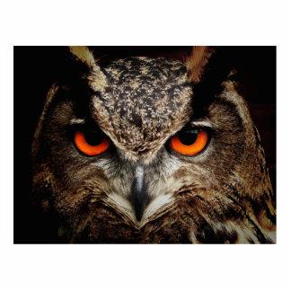 Eagle-Owl Standing Photo Sculpture