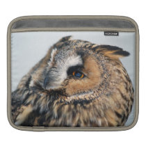 Eagle Owl Rickshaw Sleeve